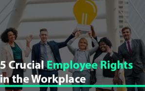 5 Crucial Employee Rights in the Workplace